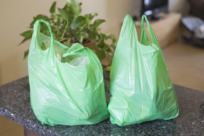 bolsas biodegradables para el hogar