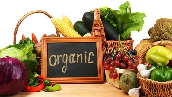 diferencia entre orgánico y ecológico