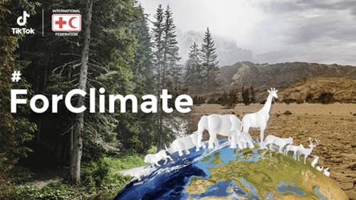 cuentas de Tik Tok que promueven el medio ambiente